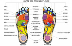carte-des-zones-de-reflexes-therapeute-essentielle-rolle